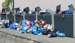 Według urzędników z Wałbrzycha jedna z firm mogła przywozić śmieci z innych miejscowości