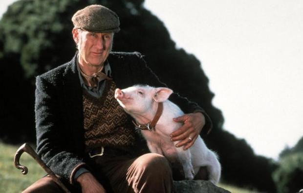 """James Cromwell w filmie """"Świnka Babe"""""""