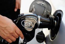 Walka z szarą strefą w branży paliwowej