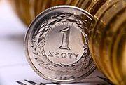 Ekonomiści wieszczą osłabienie złotego
