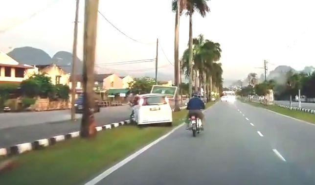 #dziejesiewmoto: samochód osobowy uderza w palmę