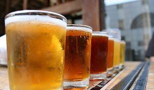 Problemy ze zbiorem chmielu. Branża piwna ucierpi przez suszę?