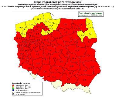 Polska. Wysoki stan zagrożenia pożarowego występuje niemal w całym kraju.