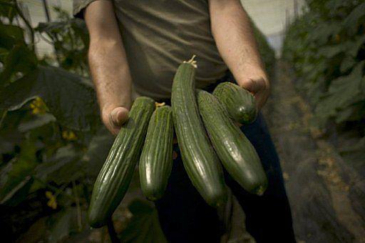 Rosja znosi embargo na import warzyw z Polski