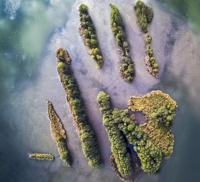 Wyspy na Stawach Milickich w Dolinie Baryczy