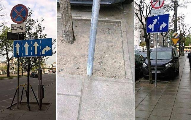 Czytelnicy alarmują: ZDM stawia znaki w misach miejskich drzew