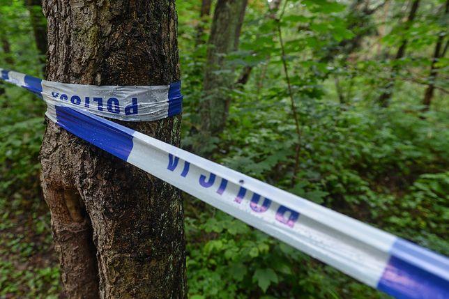 Makabryczne odkrycie w lesie. Znaleziono ciało 15-latki