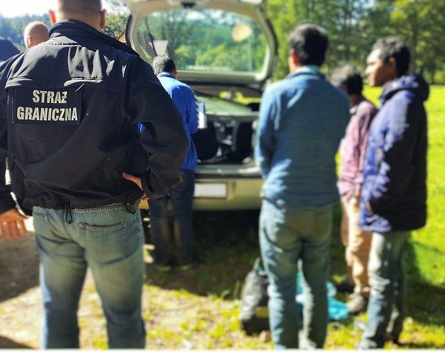 Grupa nielegalnych imigrantów zatrzymana w Bieszczadach. Udawali niepełnoletnich