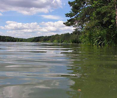Jezioro Staw we wsi Płociczno-Tartak