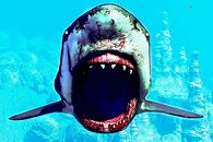Rozchodniaczek: Jest i Hitman, i Apex: Legends, i samoloty, i rekiny - Maneater