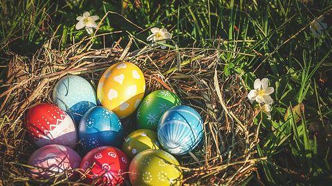 Spokojnych i zdrowych Świąt Wielkanocnych życzy redakcja dobrychprogramów