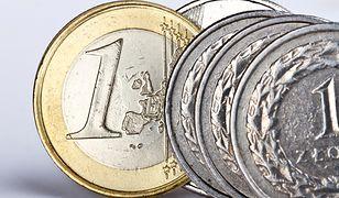 Po decyzji EBC złoty traci względem najważniejszych walut.