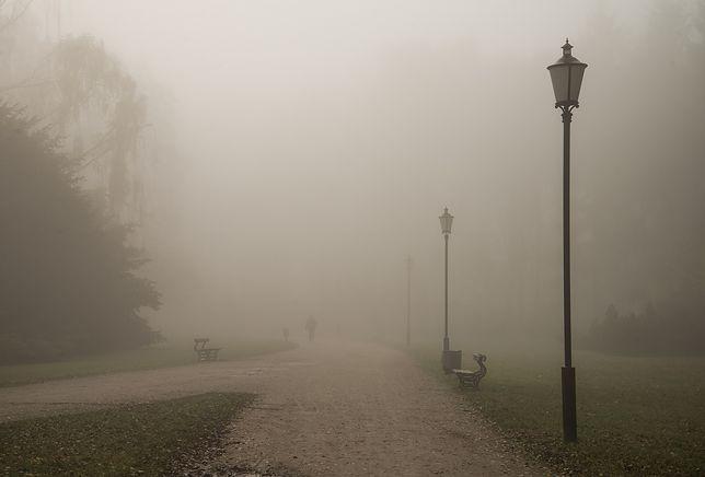 Gęste mgły od rana w Polsce