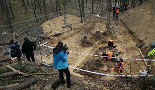 Świętokrzyskie. Odnaleziono szczątki żołnierzy Armii Krajowej / Zdjęcie ilustracyjne
