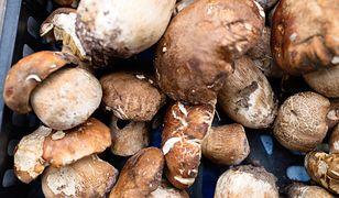 Przetwory z grzybów były obecne w kuchni od zawsze