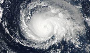 Huragan Irma zniszczył na Florydzie 1,5 mln domów mieszkalnych a 82 osoby pozbawił życia.