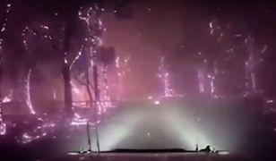 Dramatyczne nagranie australijskich strażaków trafiło do sieci i szybko zdobyło popularność