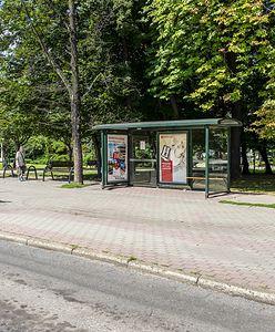 Bytom. Modernizacja przystanków autobusowych, nie zapomniano o osobach niewidomych