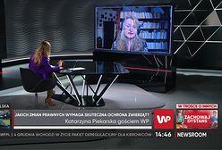 Skandal na fermie norek w reportażu WP. Posłanka zapowiada ustawę