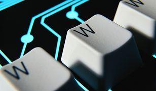 Domena .pl ma już niemal 2,5 miliona nazw