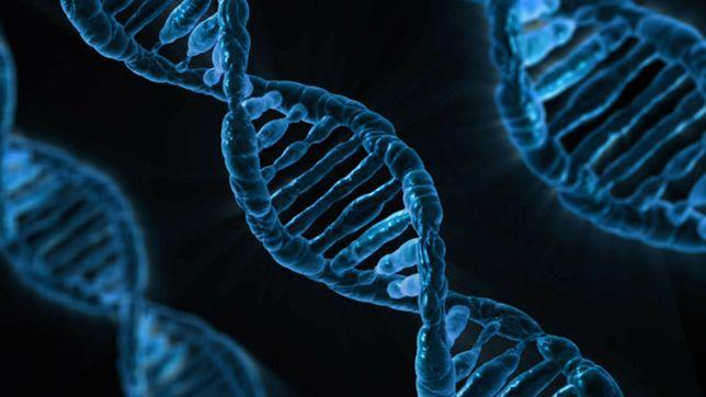 Technologia, która wykrywa materiał genetyczny w powietrzu