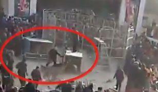 Tygrys wyskoczył z klatki podczas występu cyrku