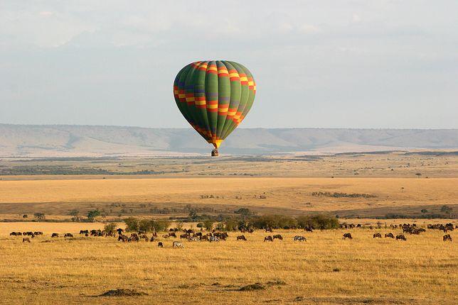 Najlepsze i najtańsze oferty wczasów w Afryce