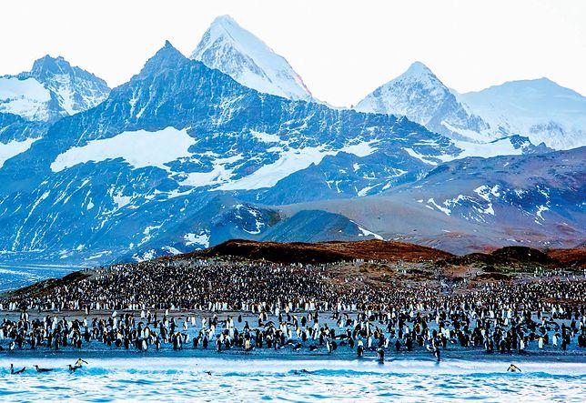 Parki narodowe na świecie. Poznaj osiem najpiękniejszych