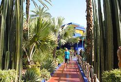Marrakesz. Odwiedzamy posiadłość Yves Saint Laurenta