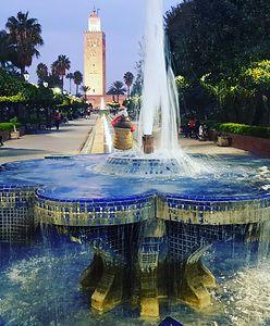 Ogrody Czerwonego Miasta. Witajcie w Marrakeszu