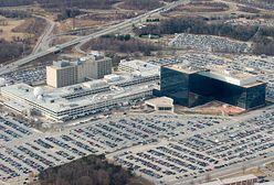 """Rosyjski niedźwiedź zamachnął się na NSA? """"To jedna z największych sensacji ostatnich miesięcy"""""""