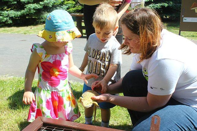 1 czerwca ZOO dla dzieci za darmo!