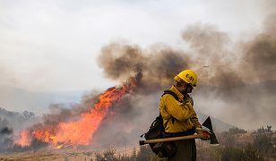 USA. Pożar trawi zachodnie wybrzeże kraju