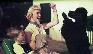 Doris Day cały majątek zapisała ukochanym pudlom