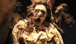 Strachu można się najeść także w muzeum mumii
