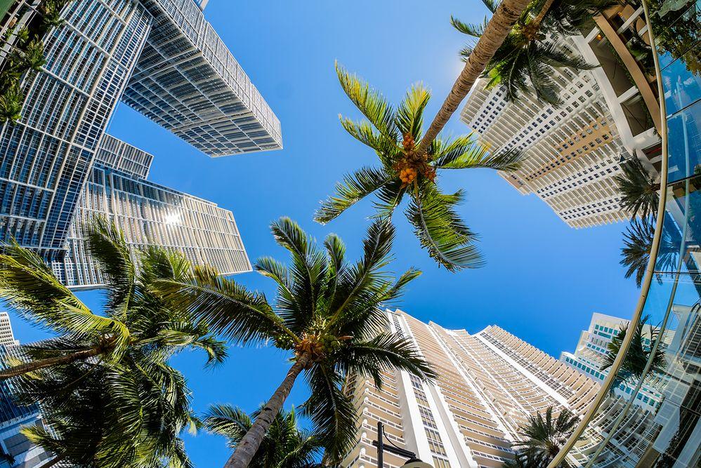 """""""Bunkier miliarderów"""". Iglesias sprzedaje najdroższy kawałek ziemi w Miami"""
