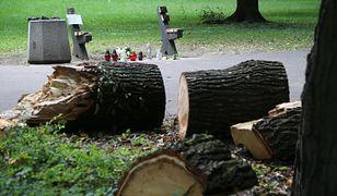 Miejsce tragedii w Parku Praskim w Warszawie