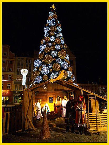 Świąteczna akcja we Wrocławiu