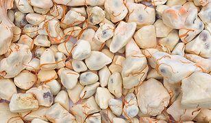 Owoc baobabu to bogate źródło wielu cennych składników odżywczych