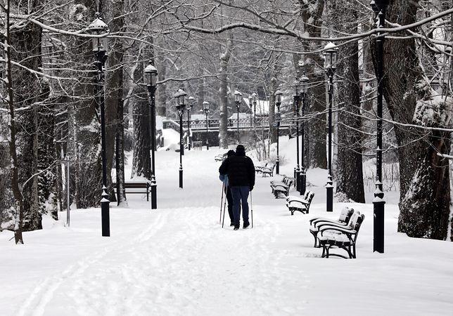 Pogoda. Piątek z kolejnymi opadami śniegu