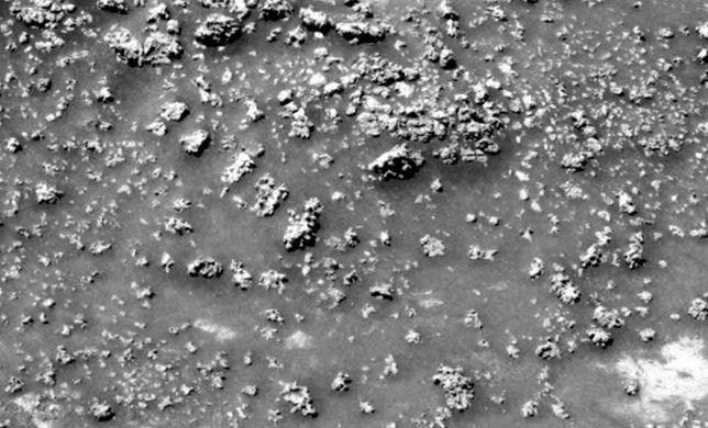 Niezwykłe znalezisko na Marsie. To może być najważniejsze odkrycie w historii ludzkości!