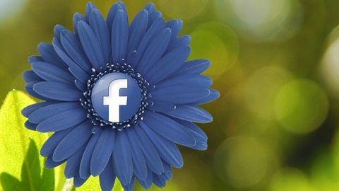 Moves jednak przekaże dane użytkowników Facebookowi