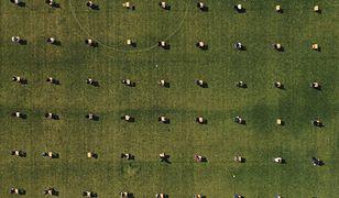 Koronawirus. Korea: egzamin pisemny na stadionie piłkarskim. Czy tak będzie wyglądała matura 2020 r. w Polsce?