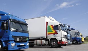 Polskie firmy sondują Ukrainę