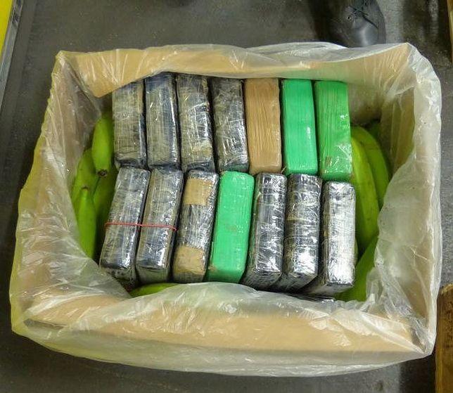 Przemyt kokainy. Aż 190 kg narkotyku między bananami