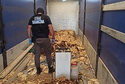 Ćwierć tony nielegalnego tytoniu w powiecie bytowskim