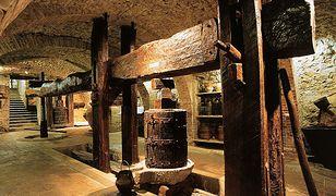 Najstarsze odnalezione wino pochodzi sprzed 7 000 lat i zostało odkryte w Iranie