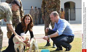 Księżna Kate i książę William w Pakistanie. Urocze zdjęcia z zabawy z psami