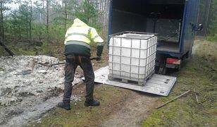 Prawie 700 kg ryb wyrzuconych do lasu. Policja ustaliła sprawcę