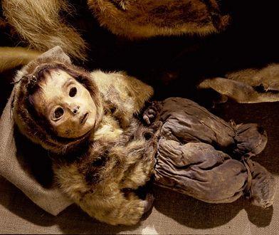 Mumia z Grenlandii